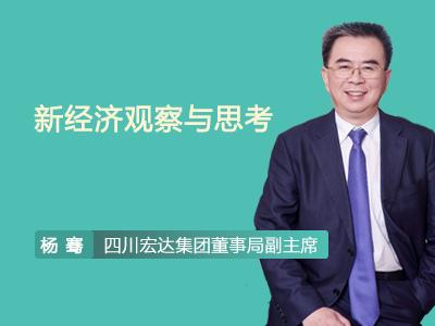 杨骞:新经济观察与思考